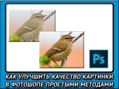 Как можно легко улучшить качество фотографии в фотошопе?