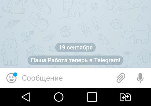 Как пользоваться мессенджером телеграмм в телефоне и на компьютере?