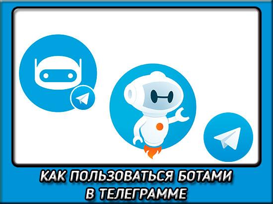 Как пользоваться ботами в телеграмме