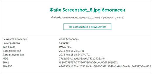 Онлайн проверка файлов компьютера на вирусы без установки программ: 6 бесплатных сервисов