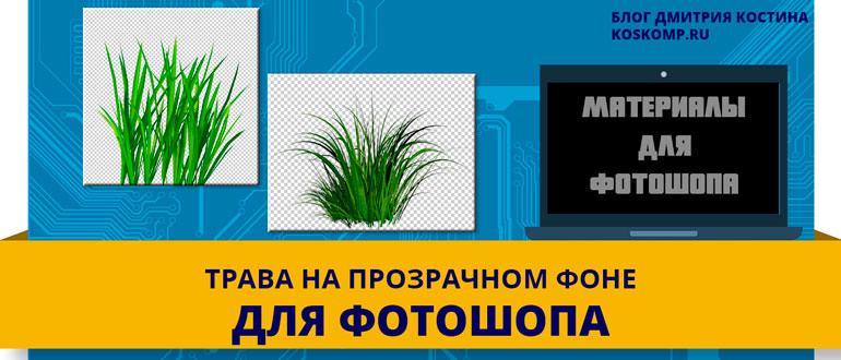 Трава на прозрачном фоне для фотошопа: 29 картинок