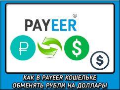 Как в payeer перевести доллары в рубли и наоборот