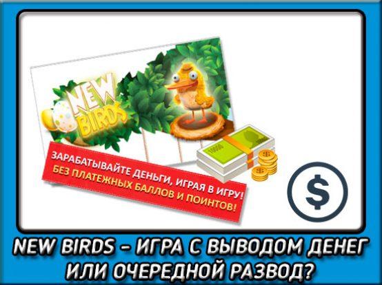 игра за деньги с птицами