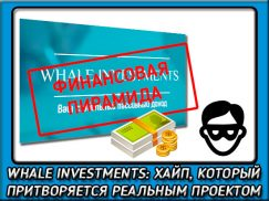 Обзор и отзывы об инвестиционном проекте whale investments. Очередной развод или нет?