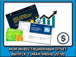 Мой инвестиционный отчет: Выпуск 1